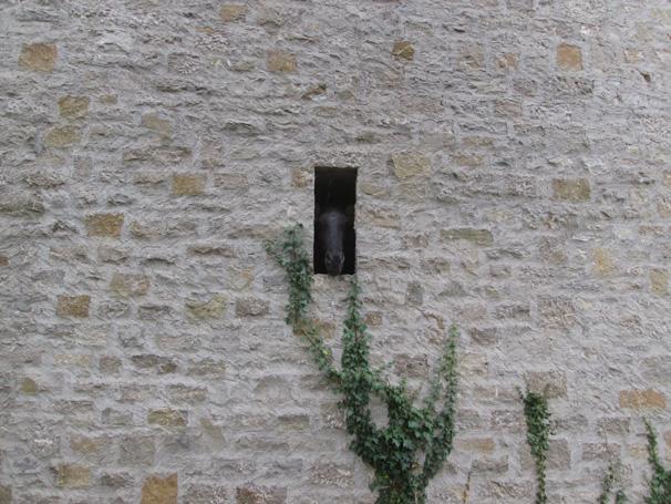 Sie sehen die Bilder zu: Burg Neuhaus, Igersheim (2. BA)